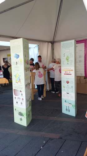 VINUMONDO toulouseatable 5sept2018 stand IVSO
